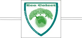 eco colect – fose septice arad